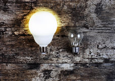 Glowing bulb uniqueness concept Royalty Free Stock Photography