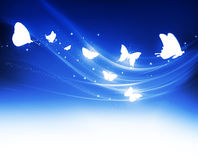 Glowing butterflies Royalty Free Stock Photos