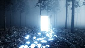 Glowing butterflies in fog night forest. Light portal door. Mistic and magic concept. Realistic 4k animation.