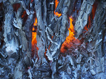 Glowing charcoal Stock Images