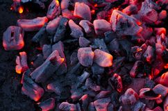 Glowing Charcoals Royalty Free Stock Images