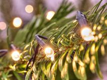 Glowing Christmas lights. Christmas tree decorated with garlands. Close-up royalty free stock images