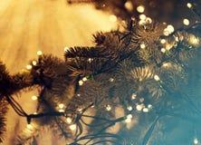 Glowing Christmas lights Stock Photo