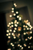 Glowing Christmas Tree. A christmas tree lit up ready for the holiday season Stock Images