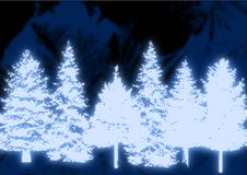 Glowing Christmas Trees Royalty Free Stock Images