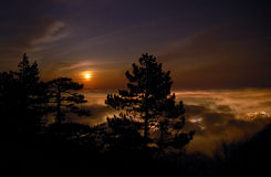 Glowing clouds. And Moon behind pine silhouette Royalty Free Stock Photos