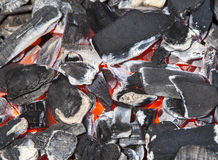 Glowing coals Stock Images