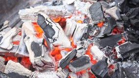 Glowing coals stock footage