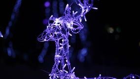 Glowing deer wholly stock footage