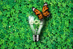 Glowing eco text in light bulb being on green grass background and monarch butterfly , concept idea, illustration Stock Photo