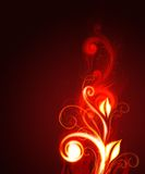 Glowing Floral Background. An illustration of a glowing red floral background Stock Image