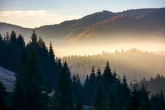 Glowing fog in mountains at sunrise. Beautiful autumn scenery of Apuseni Natural Park in Romania royalty free stock photography