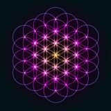 Glowing Geometrical Flower of Life Royalty Free Stock Photography