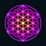 Glowing Geometrical Flower of Life Royalty Free Stock Photo