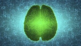 Glowing green brain wired on neural surface or electronic conductors Stock Photography