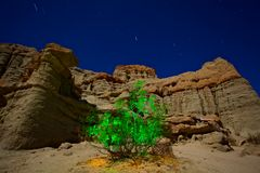 Glowing Green Bush in Canyon at Night. An image using a 'painting with light' method creates a wild glowing brush against a moonlit mountain backdrop with Stock Photo