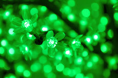 Glowing green flower lightbulbs for christmas decoration with defocused background. The glowing green flower lightbulbs for christmas decoration with defocused Stock Photo