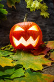 Glowing halloween pumpkin on autumn leaves Royalty Free Stock Photography