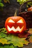 Glowing halloween pumpkin on leaves Stock Image
