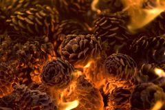 Glowing hot pinecones. Glowing pinecones in a firepit Royalty Free Stock Image