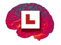 GLOWING HUMAN BRAIN WITH RED LEARNER L PLATE. SIGN ISOLATED ON WHITE BACKGROUND Royalty Free Stock Photography