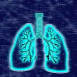 Glowing human lungs in blue background Stock Photos