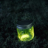 Glowing jar on the moss Royalty Free Stock Photos