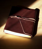 Glowing leather bound book Stock Images