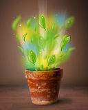 Glowing leaves coming out of flowerpot Royalty Free Stock Photo