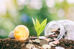 Glowing light bulb with small plant growing from soil and money stock photos