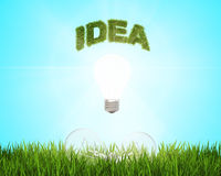 Glowing light bulb with the word idea over a field of fresh green grass, which are 2 more bulbs.. Green energy concept. Stock Photography