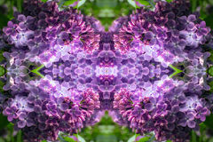 Glowing lilac portal to another world Stock Image
