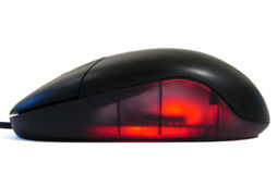 Glowing Mouse Stock Photography