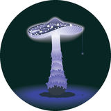 Glowing mushroom Stock Images