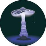 Glowing mushroom Stock Images