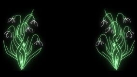 Glowing neon lights forming snowdrops on both sides of video. 2d animation of flowers on black background. Nature