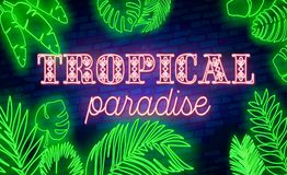 Glowing Neon Summer Sign With Neon Tropical Exotic Leaves Stock Photos