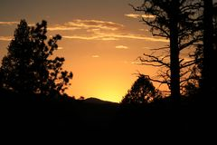 Glowing orange sunset with silhouette of trees stock photo