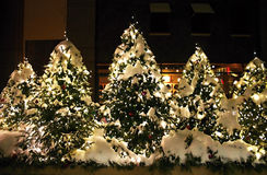 Glowing outdoor Christmas trees at night Stock Photos