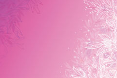 Glowing pink tree branches horizontal background Royalty Free Stock Photography