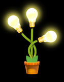 Glowing plant in pot Royalty Free Stock Images