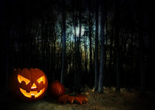 Glowing pumpkin in a dark mystic halloween forest under the moon Royalty Free Stock Photo