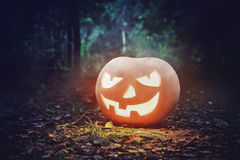 Glowing Pumpkin in the forest. Jack O Lantern for Halloween Royalty Free Stock Photos