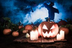 Glowing pumpkin with scarecrows on the field for Halloween Stock Images