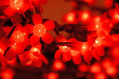 Glowing red flower lightbulbs for christmas decoration with defocused background. The glowing red flower lightbulbs for christmas decoration with defocused Royalty Free Stock Photos