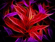 Glowing Red Purple Leaves Abstract Royalty Free Stock Photos