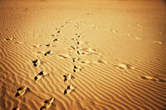 Glowing Sand Foot Prints Royalty Free Stock Photography