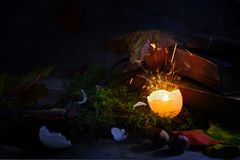 Glowing and sparkling eggshell on moss with autumn leaves and ol Stock Photos