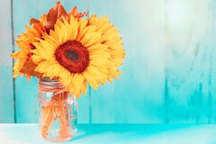 Free Glowing Sunflowers In A Vase With Turquoise Background Royalty Free Stock Images - 186428999