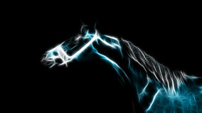 Glowing Horse Stock Photo